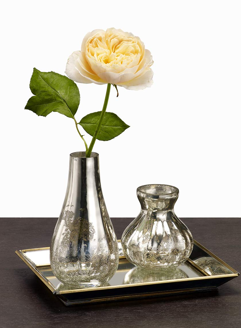 Serene Spaces Living Mercury Crackle Bud Vases (Small)