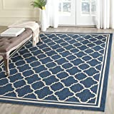 Accent Area Rug in Beige and Navy