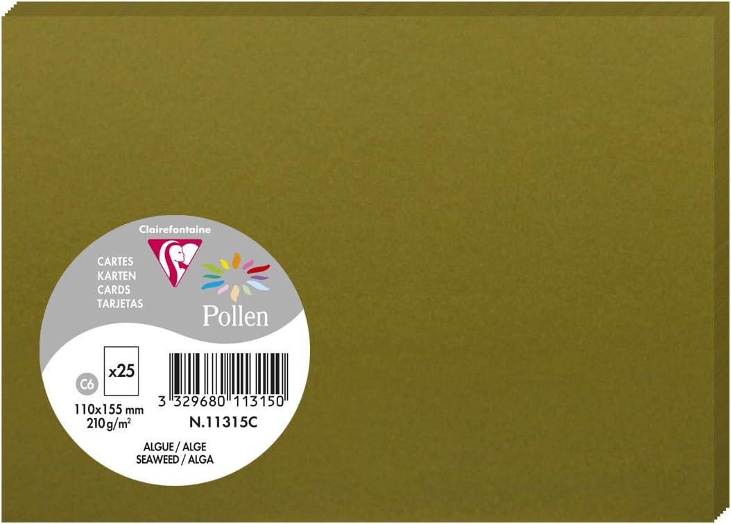 Algue Clairefontaine 11315C Pollen Paquet de 25 Cartes 11x15,5 cm