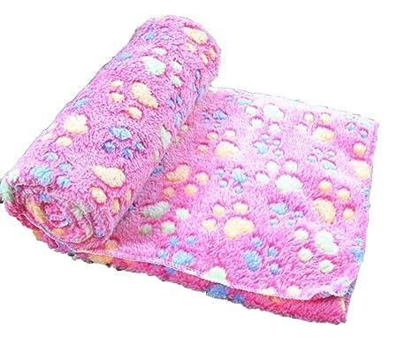 Kitty princess Mascota almohadilla almohadilla perro manta otoño e invierno cálida manta terciopelo coral grueso