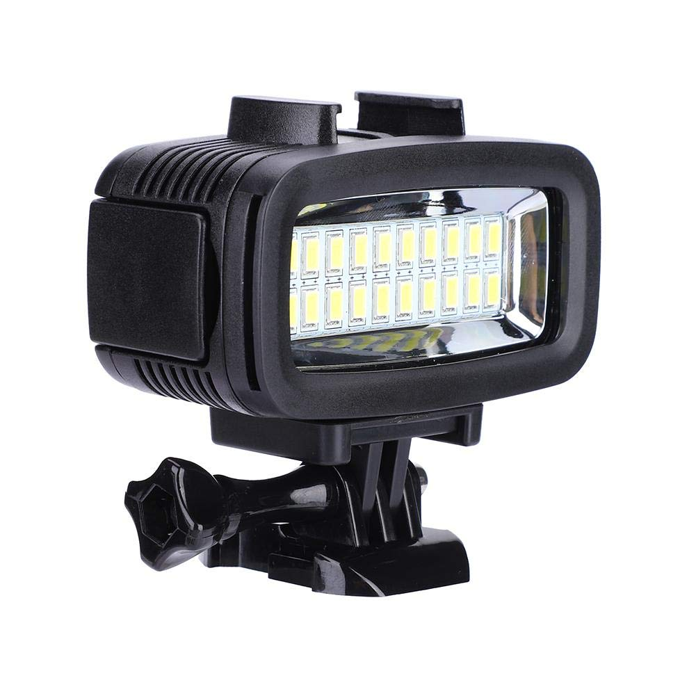 Taidda Waterproof Photography Diving Fill Light, 20 LED Sturdy Durable Protective 40M Underwater with Lamp Mount for Gopro by Taidda