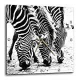 Cheap 3dRose Three Zebras. Zebra Print. Popular image. – Wall Clock, 13 by 13-Inch (dpp_218444_2)