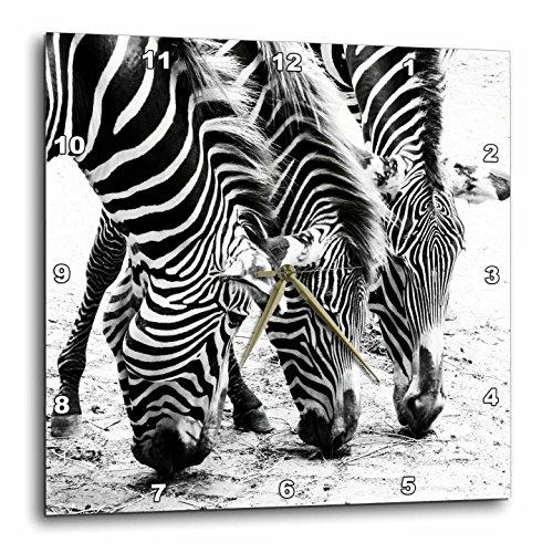 3dRose Three Zebras. Zebra Print. Popular Image. – Wall Clock, 13 by 13-Inch DPP_218444_2