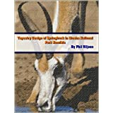 Machine Embroidery, Tapestry of Springbuck in Etosha National Park Namibia (Singles) (Machine Embroidery, Tapestries of African Wildlife and Birds Book 2)