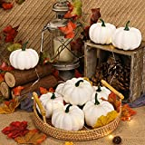 DomeStar Artificial Pumpkins Set, 12PCS White Fake