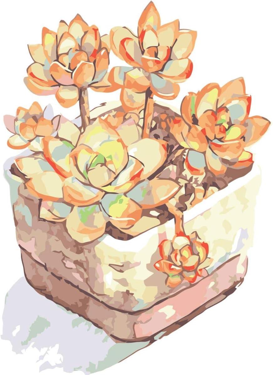 KLBPL Pintar por Numeros Flores En Una Maceta Simple Lino Lona–DIY Pintura Al Óleo Decoracion De Pared Regalos Sin Marco 40,6X50,8 Cm con Pinturas Acrílicas Y 3 Pinceles