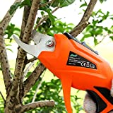 HomeYoo Rechargeable Electric Pruning Shear, 3.6V Li-ion Battery Cordless Secateur Branch Fruit Tree BranchesCutter For Home Garden, 3.6V 1.5AH 1.2S/time 15-20min (Orange)