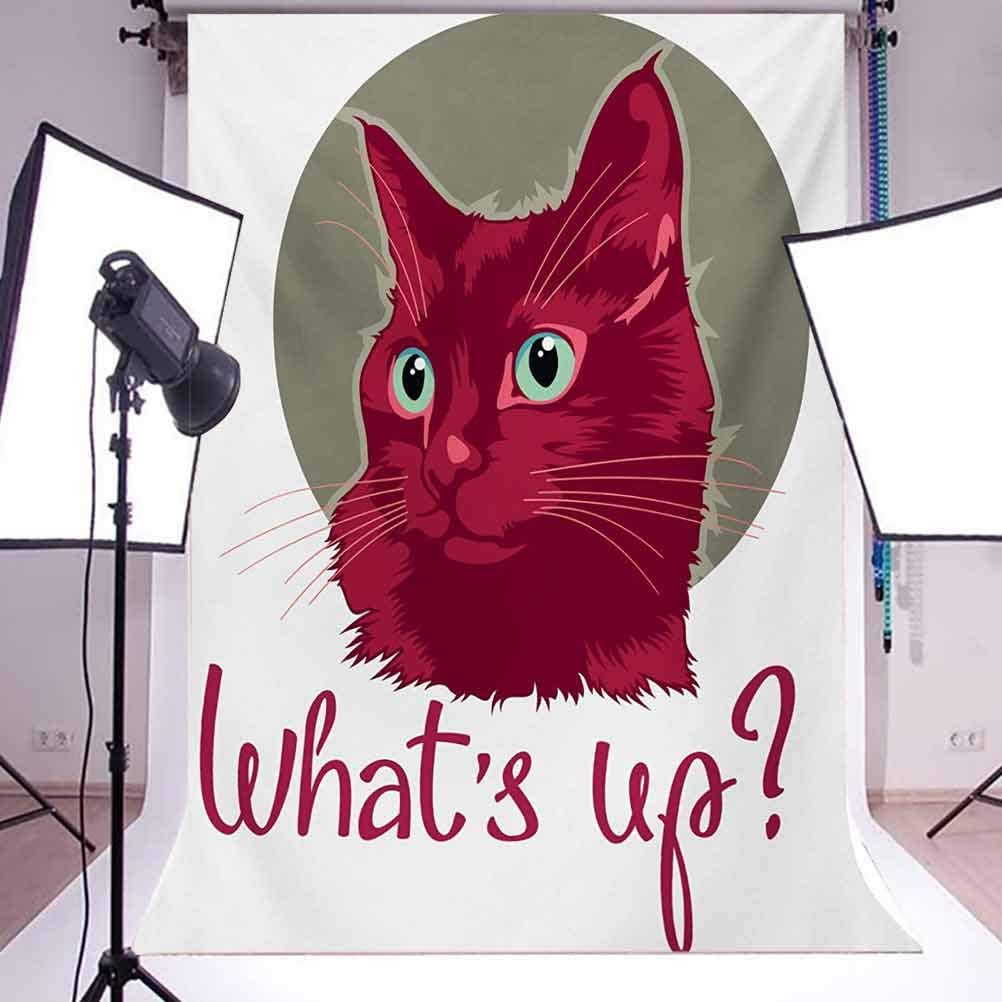 6.5x10 FT Photo Backdrops,Colorful Modern Artwork with Young Cat Portrait Asking Whats Up Lovely Animal Background for Kid Baby Boy Girl Artistic Portrait Photo Shoot Studio Props Video Drape Vinyl