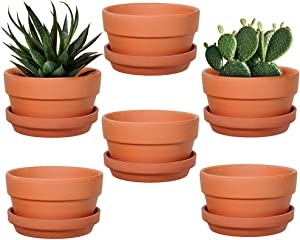 6-Pack 5 Inch Terracotta Shallow Succulent Pot with Saucer for Succulent Cactus Plant Pots with Drainage Hole for Plants Garden Windowsill Indoor & Outdoor Wedding Favors Gifts (5 inches)
