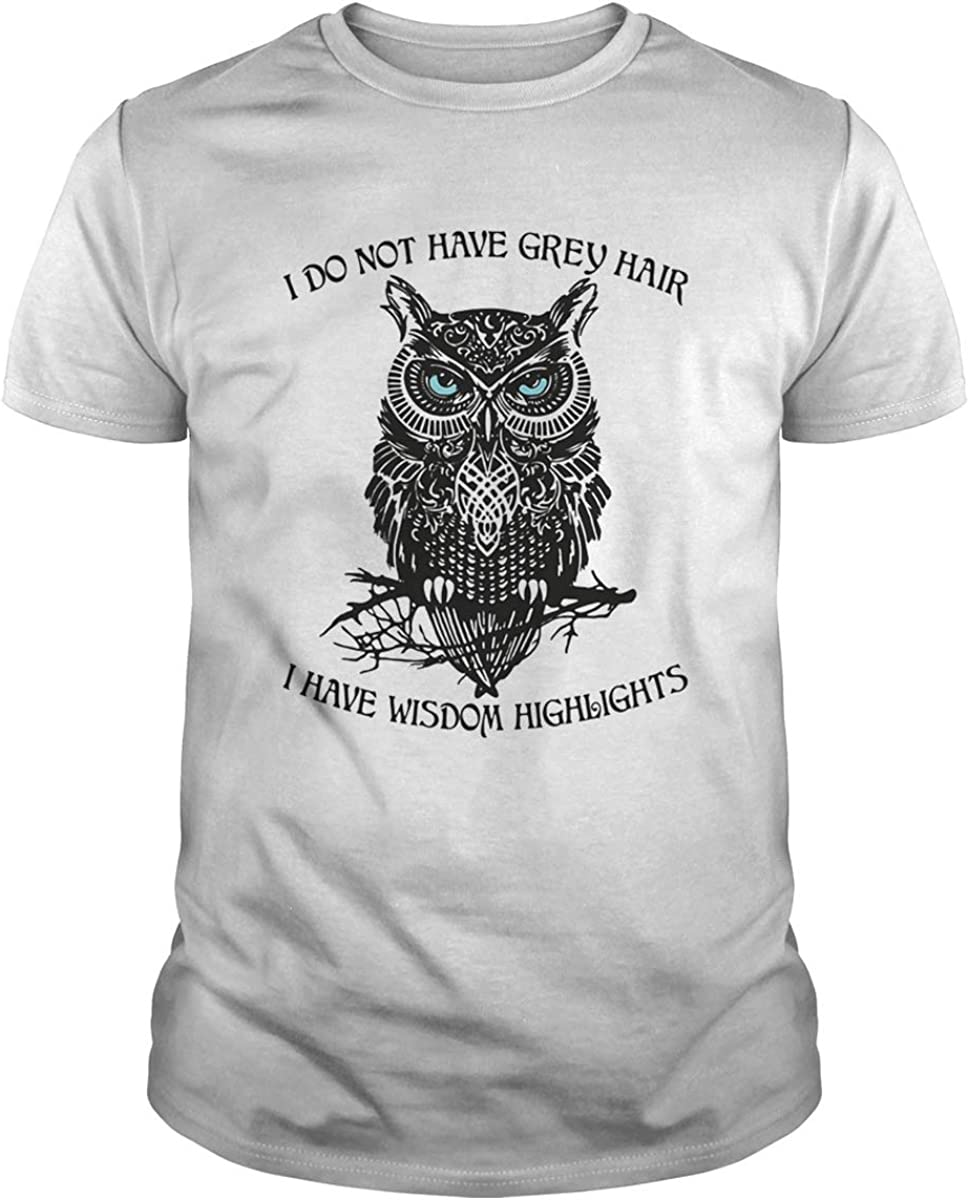 Its Not Gray Hair Its Wisdom Highlights T-Shirt Gift