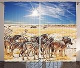 Wildlife Decor Curtains Zebras in Savannah Desert Waterhole on Hot Day Africa Safari Adventure Land Print Living Room Bedroom Window Drapes 2 Panel Set Multi