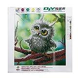 NNDA CO DIY 5D Owl Diamond Painting Embroidery Crafts Cross Stitch Home Room Wall Decor,25X25CM