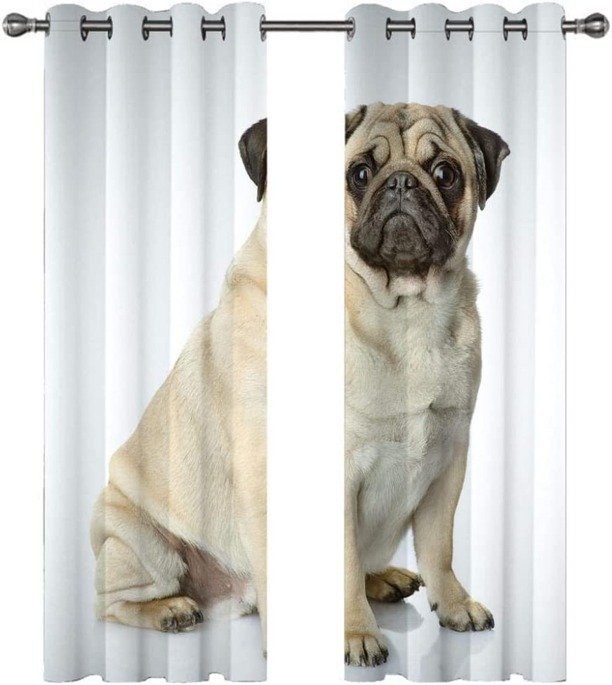 zpangg Black Out Window Cover Cute Pug Blackout For Children Bedroom Eyelet Thermal Insulated Room Darkening Curtains For Nursery Living Room Bedroom 150/×166Cm