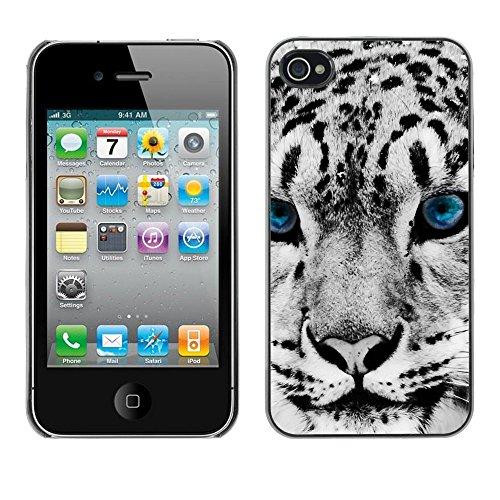 GooooStore/Housse Etui Cas Coque - Snow Leopard Winter Big Cat Blue Eyes White - Apple iPhone 4 / 4S