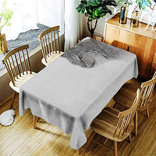 (XXANS Tablecloth for Kids/Childrens,Hunting,Lynx in The Central Norway Wild Cat North Cold Snowy Mountain Carnivore Predator,Party Decorations Table Cover Cloth,W52x70L Grey White)