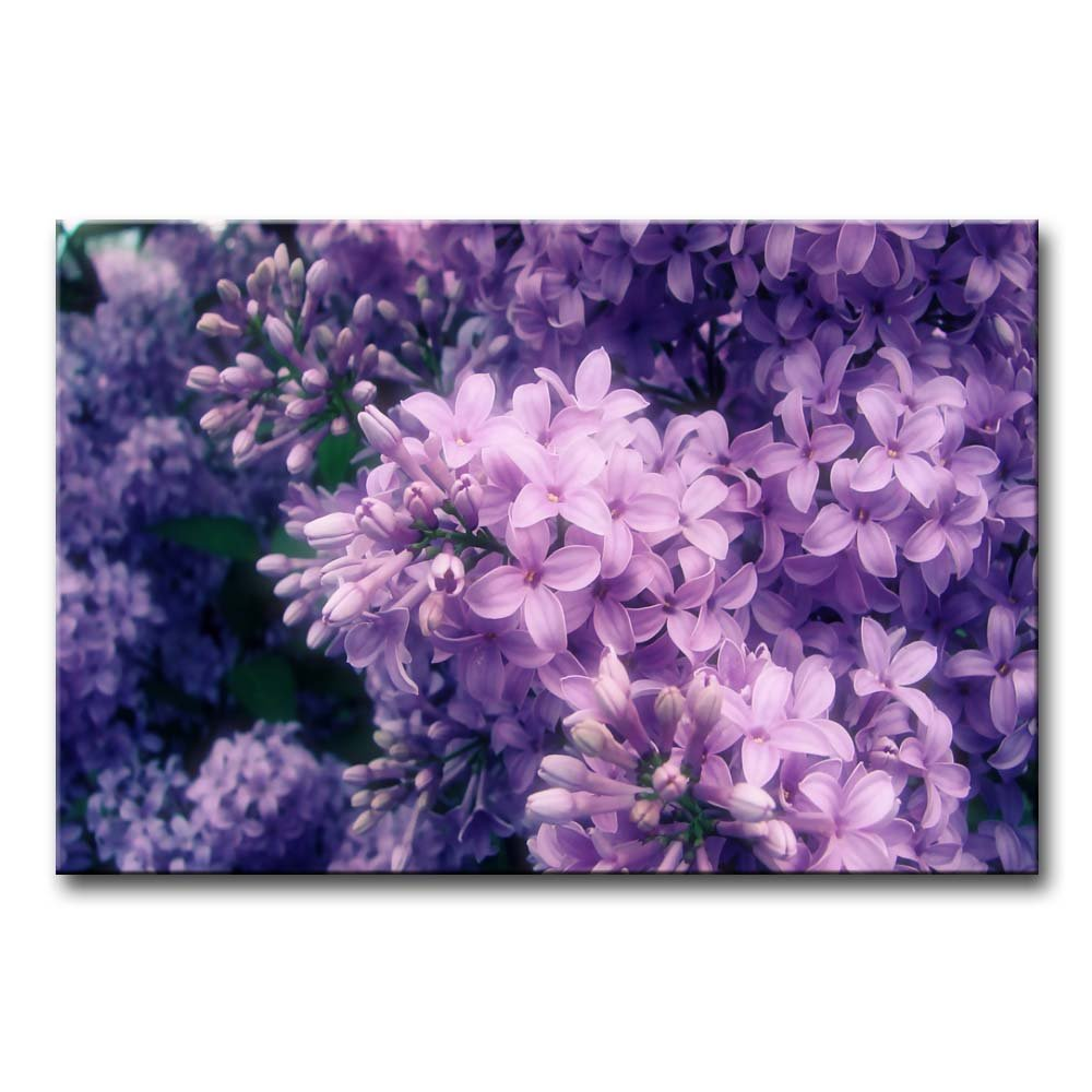Canvas Print Wall Art Painting for Home Decor Purple Lilac Paintings Stretched and Framed Artwork Oil The Picture for Living Room Decoration Flower Pictures Photo