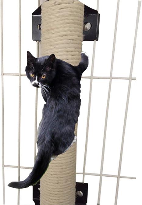 Da Jia Inc - Rascador vertical de pared para gatos con barra de ...