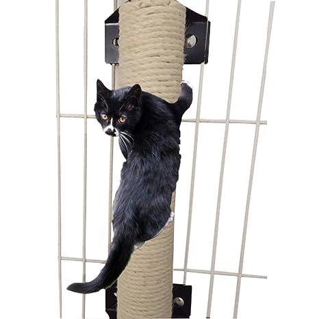Da Jia Inc - Rascador vertical de pared para gatos con barra de sisal para jaulas