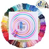 116Pcs Full Set of Embroidery Starter Kit with 100 Color Threads, 5 Pieces Embroidery Hoops,1 Pieces Cross Stitch Cloth and Cross Stitch Tool Set