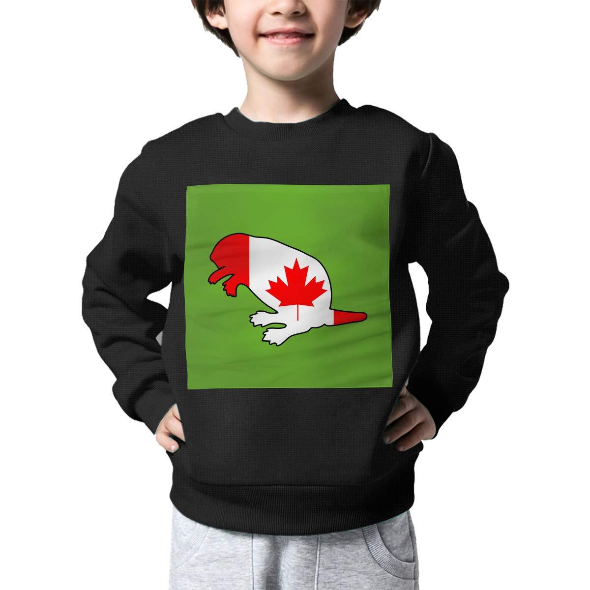 AW-KOCP Childrens Canada Flag Beaver Sweater Baby Boys Sweatshirt