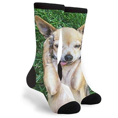 Amazon.com: Calcetines con diseño de chihuahua casual ...