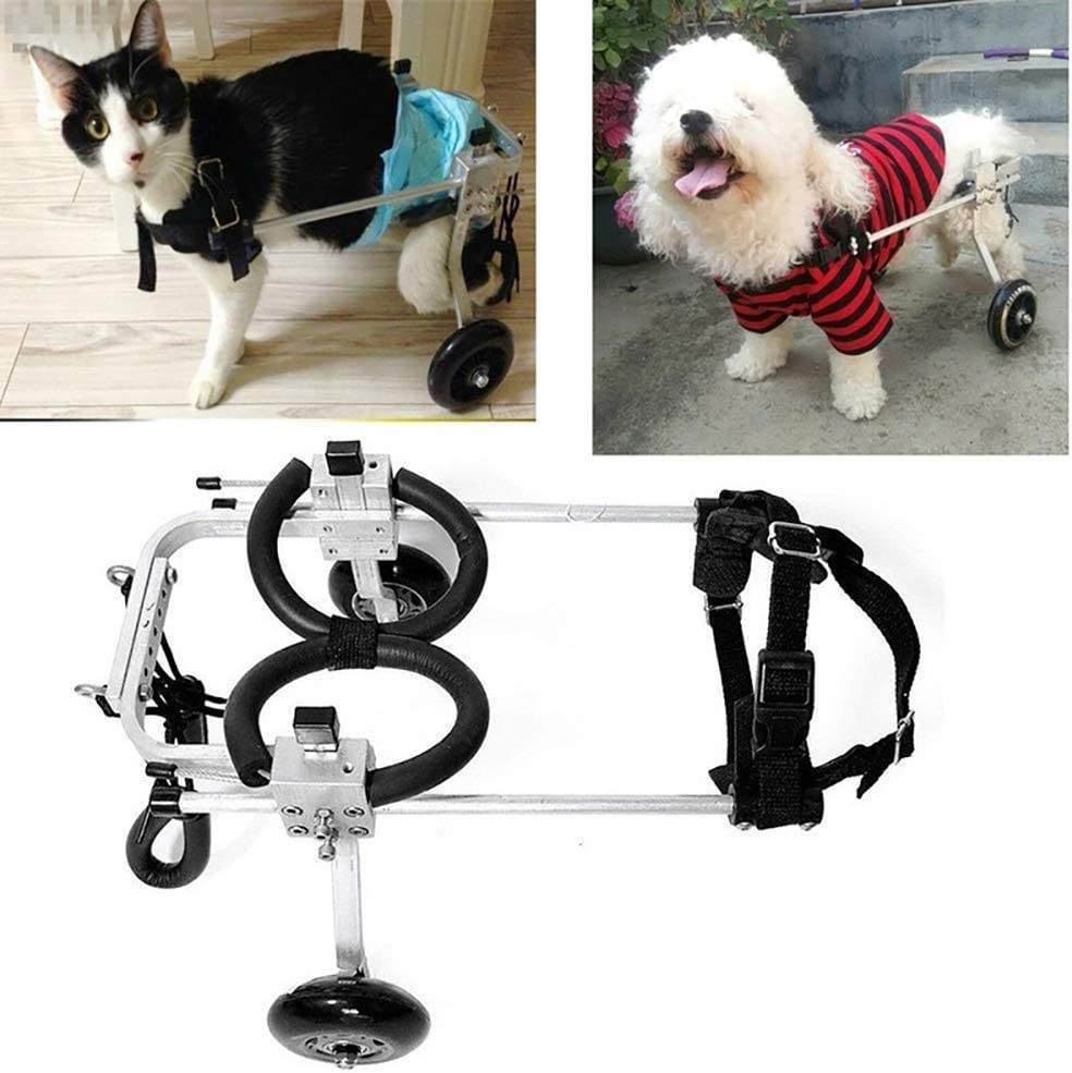 NSpape Silla de Ruedas para Perro, Silla de Ruedas Ajustable para Perros discapacitados, para pasear al Coche, para Perros pequeños y Ancianos