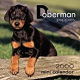 Doberman Puppies 2000 Mini Calendar