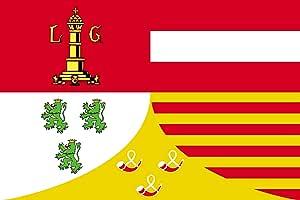 Liège Flag | Landscape Flag | 0.06m² | 0.65sqft | 20x30cm | 8x12in for Diplomat-Flags Car Flag Poles