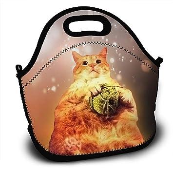 e1819bf84726 Amazon.com: Funny Fat Orange Cat Portable Lunch Tote Bags, Takeaway ...