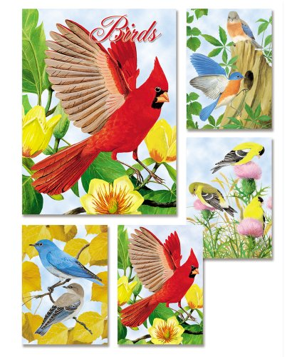 20 Assorted Note Cards - 5