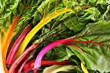 Swiss Chard Rainbow Seeds, 300+ Premium Heirloom Seeds, ON SALE!, Type: Beta Cicla, 99.9% Purity!, (Isla's Garden Seeds), Non Gmo Organic Survival Seeds, Highest Quality!
