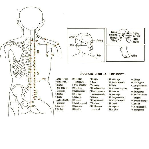 Las Copas De Masaje Con Silicona Mejoran El Flujo Sanguíneo Y Aumentan La Producción De Colágeno Para La Celulitis, La Artritis, Los Espasmos Musculares, ...