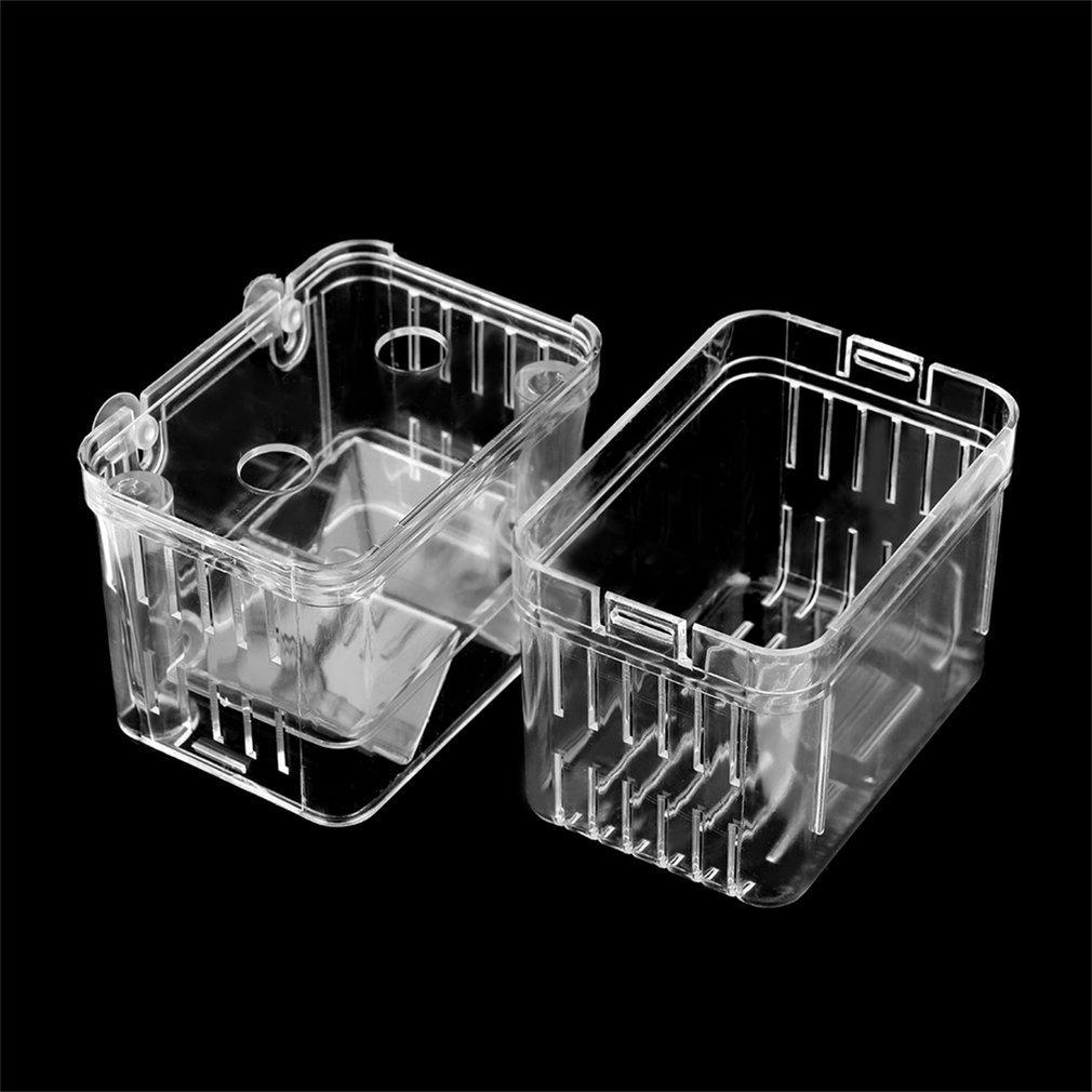 Ballylelly Fish allevamento isolamento appeso acquario accessori Incubatrice box serbatoio colore trasparente