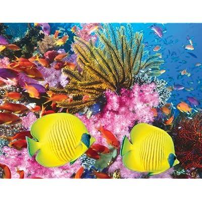 Springbok Coral Carnival 500 Piece Jigsaw Puzzle By Springbok