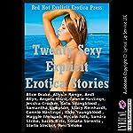 Twenty Sexy Explicit Erotica Stories | Toni Smoke,Stella Sinclair,Sonata Sorento,Sarah Blitz,Sandra Strike,Maggie Fremont