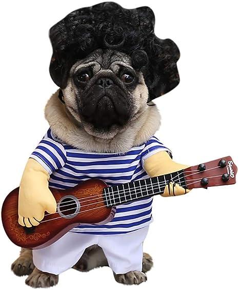 yMaJesT Ropa para Mascotas, Guitarra a Rayas, Divertido, para ...