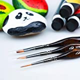 Transon Artist Detail Paint Brushes with Case