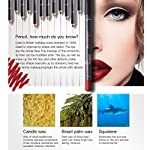 12Pcs-Lot-Set-12-Colors-Lip-Liner-Pencil-Waterproof-Non-marking-Matt-Velvet-Lipstick-Pen