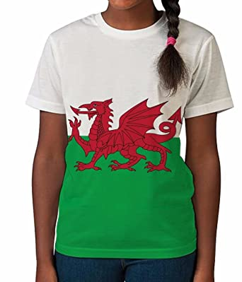 13cf3df71 Amazon.com  Kids Graphic Tee Youth T Shirt Wales Flag Clothes for Girls   Clothing