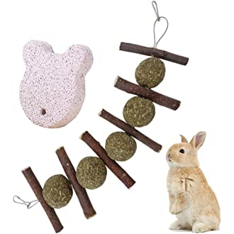 Shelltech Rabbit Chew Toys Guinea Pigs Rabbits Bunny Hanging Toys with Timothy Balls and Cakes for Bunny Chinchilla Hamsters