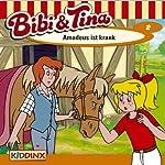 Amadeus ist krank (Bibi und Tina 2) | Ulf Tiehm