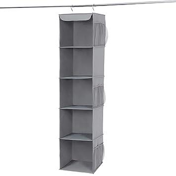 Amazon.com: SONGMICS Organizador de armario para colgar ...