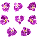 HOKPA Artificial Silk Phalaenopsis Flower Heads, Fake Butterfly Orchid Head Floral Bouquet for Crafts Wedding Decoration…