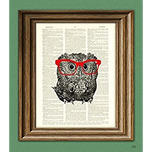 Owl Smarty Pants Nerdy Young Owl With Red Glasses Illustration Beautifully Upcycled Dictionary Page Book Art Print