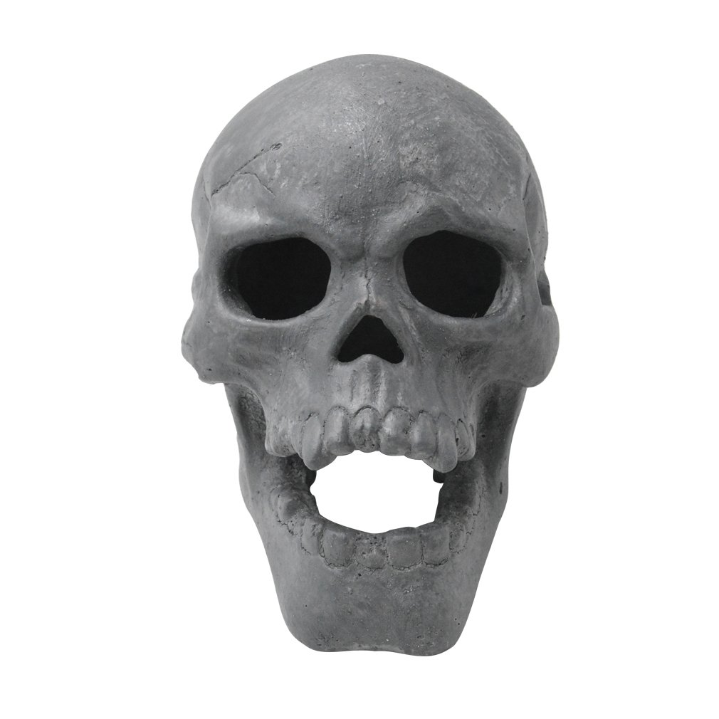 Stanbroil 9-Inch Imitated Human Skull Gas Log for Indoor or Outdoor Fireplaces, Fire Pits Halloween Decor, 1-Pack by Stanbroil