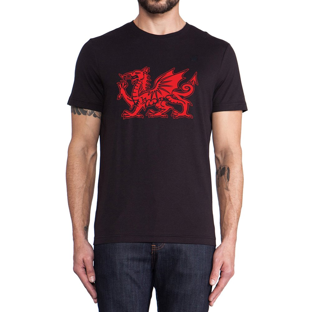 Loo Show The Welsh Dragon Graphic T Shirts Summer Tee