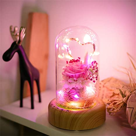Amazon.com : Chouron Lamp Decor Permanent Flower with Music ...