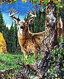 Luxury Deer Blanket - Wild Animal Large size Blanket - Find 9 Deers - 79inx 95in