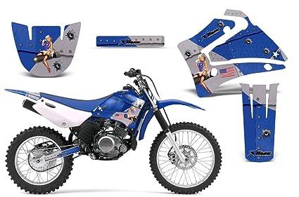 Amazon.com: 2000-2007 Yamaha TTR 125 AMRRACING ATV Graphics Decal ...