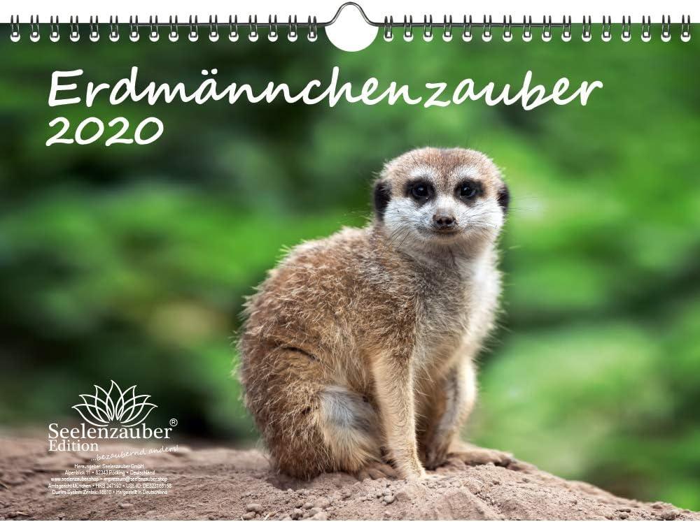 Calendario de 2020, diseño de suricato de suricato y tarjeta de regalo adicional